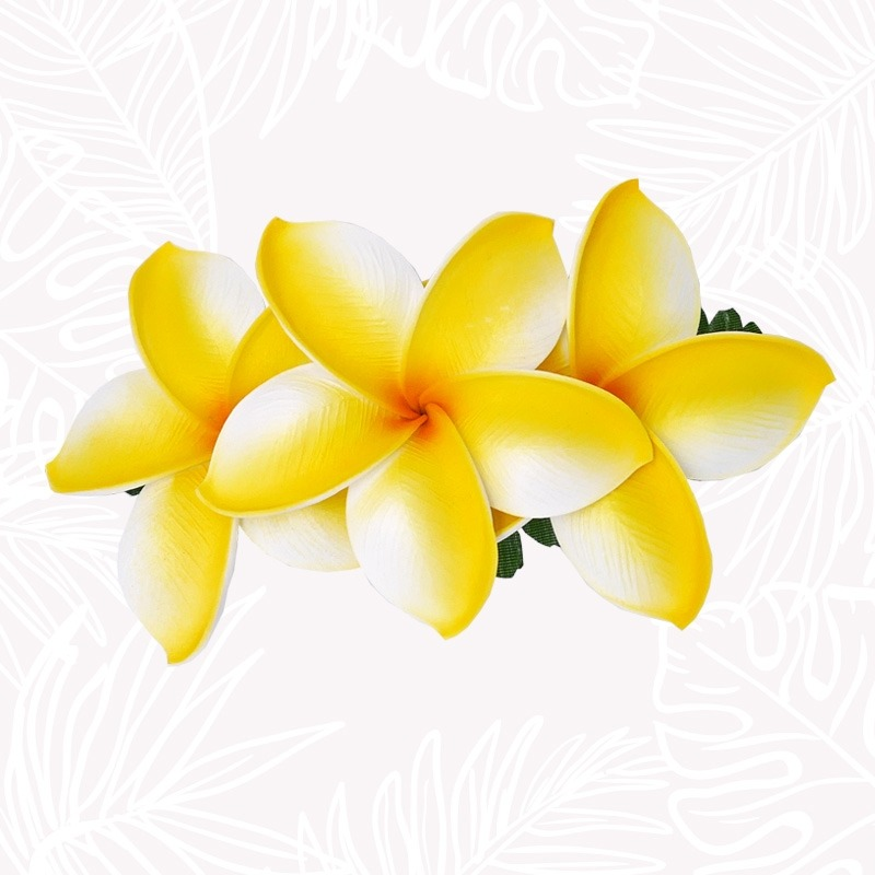 copy of White Frangipani...