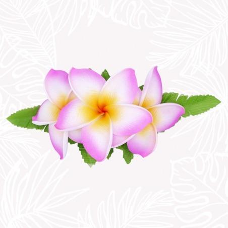 Barrette Pince Cheveux Fleurs de Frangipanier Roses & Blanches