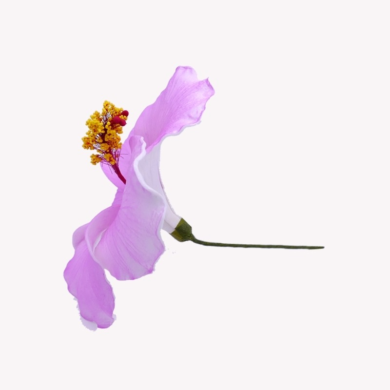 Fleur Cheveux Hibiscus Mauve
