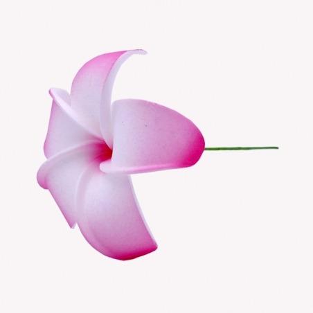 Fleur Cheveux Frangipanier Rose et Blanche