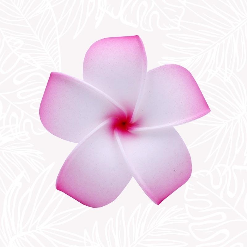 Pink & White Frangipani...
