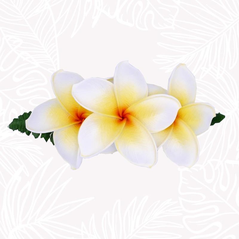 White Frangipani Flower...