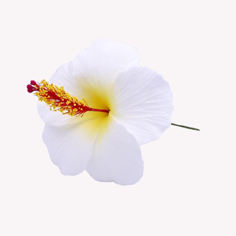 Fleur Cheveux Hibiscus Blanche