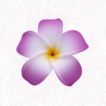 Fleur de Frangipanier Violette